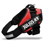 Biothane Dog Leads And Julius K9 Dog Harnesses
