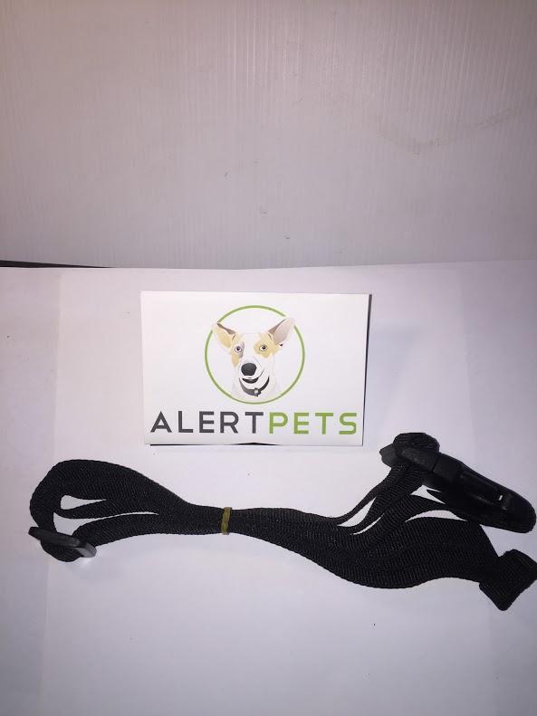 Best Dog Training Sydney Best Dog Training Equipment Sydney Training Waist Clip