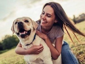 Best Dog Accessories Parramatta