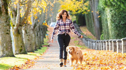 Best Dog Trainer Brisbane